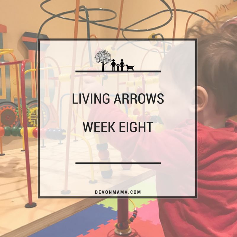 Living Arrows Week 8 Soft Play