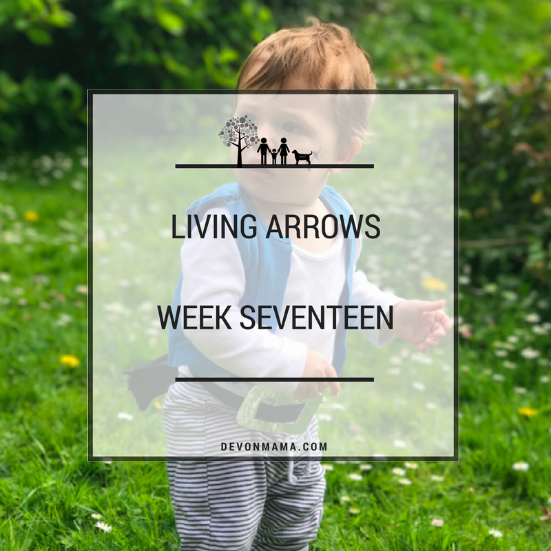 Living Arrows Week Seventeen