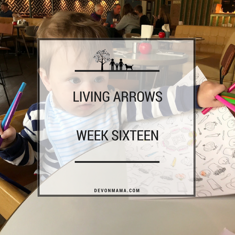 Living Arrows- Week Sixteen