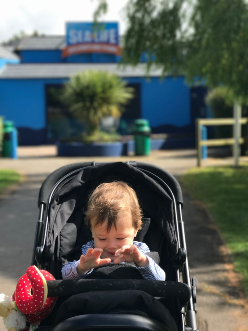 Days Out Weymouth SEA LIFE Centre