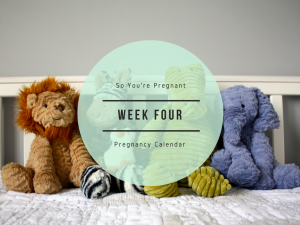 Pregnancy Calendar - Week Four