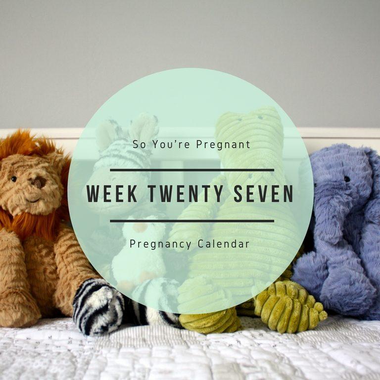 Pregnancy Calendar - Week Twenty Seven