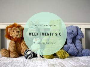 Pregnancy Calendar - Week Twenty Six