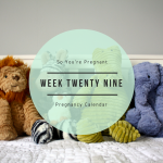 Pregnancy Calendar - Week Twenty Nine