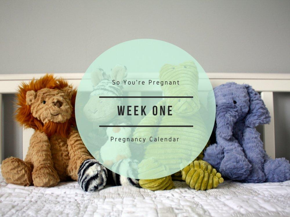 Pregnancy Calendar - Week One