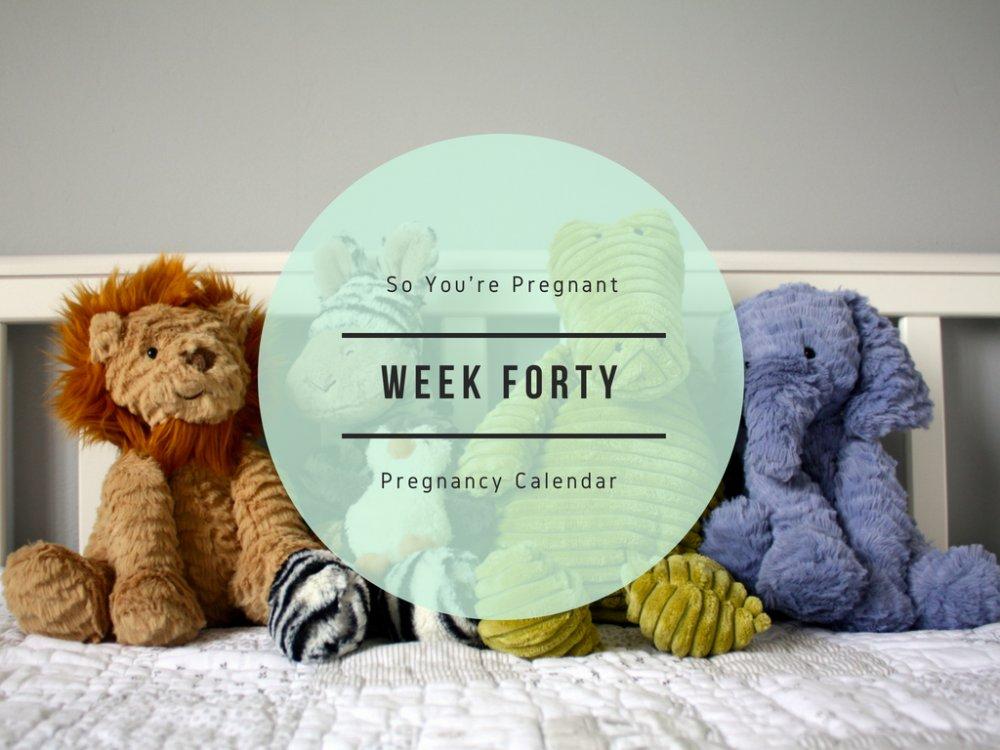 Pregnancy Calendar - Week Forty