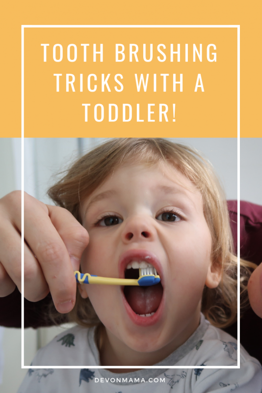 Take the stress out of toothbrushing with these simple tips and tricks to make it easier. From role play to songs, we have everything you need to get your toddler or child brushing their teeth like a pro!