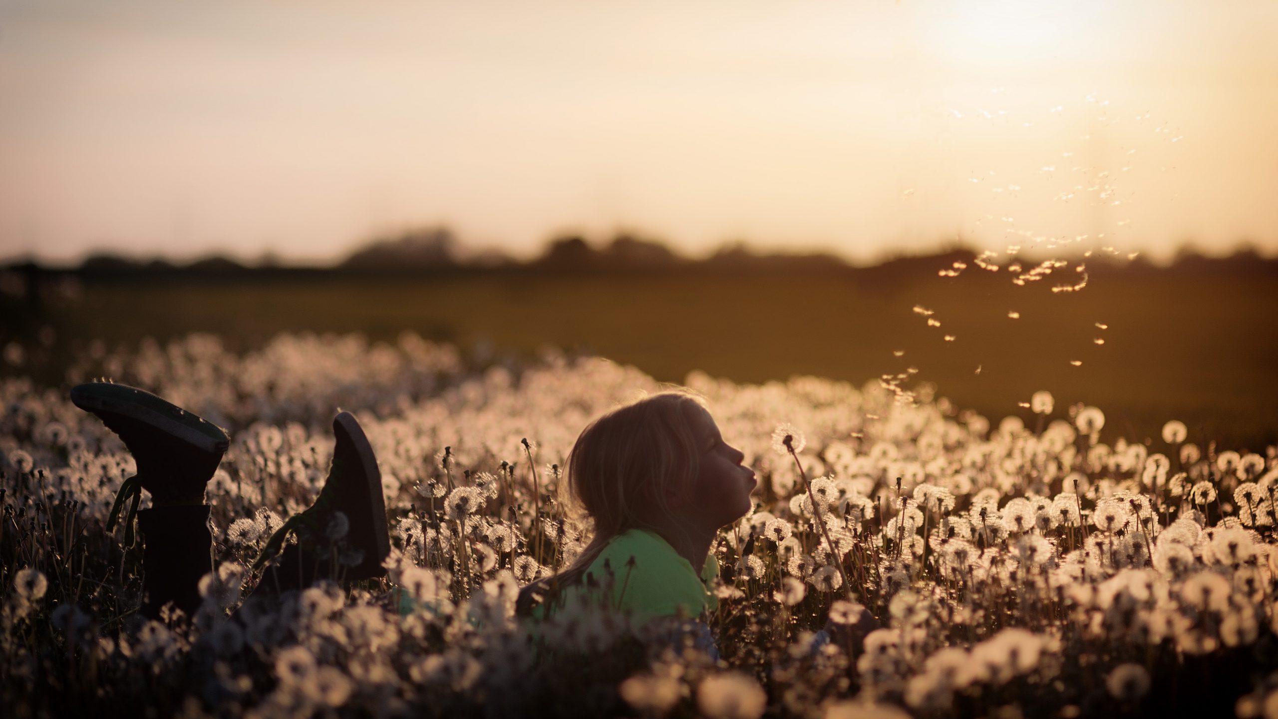 Child in field of dandelions